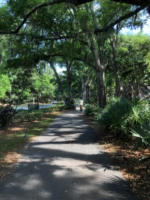 Bike path at Hilton Head - I imagine it's usually filled with bikes and people but it was great today