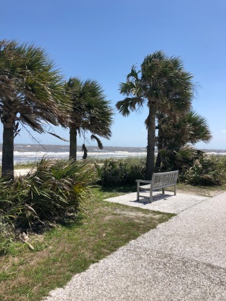 Ride along the bike path in Jekyll Island.
